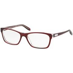 Ralph Lauren 7039 1081 - Oculos de Grau